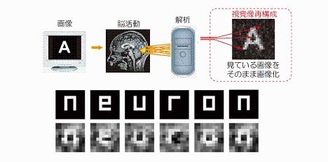 mind-reader-neuron