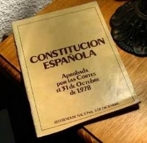 constitucion1-300x293