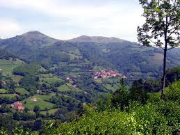 paisaje-asturiano.jpg
