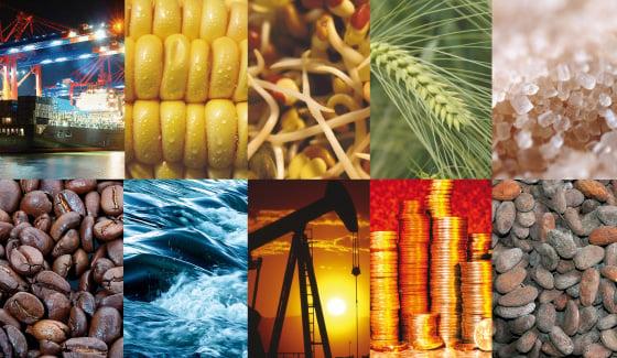 Materias primas (Commodities)