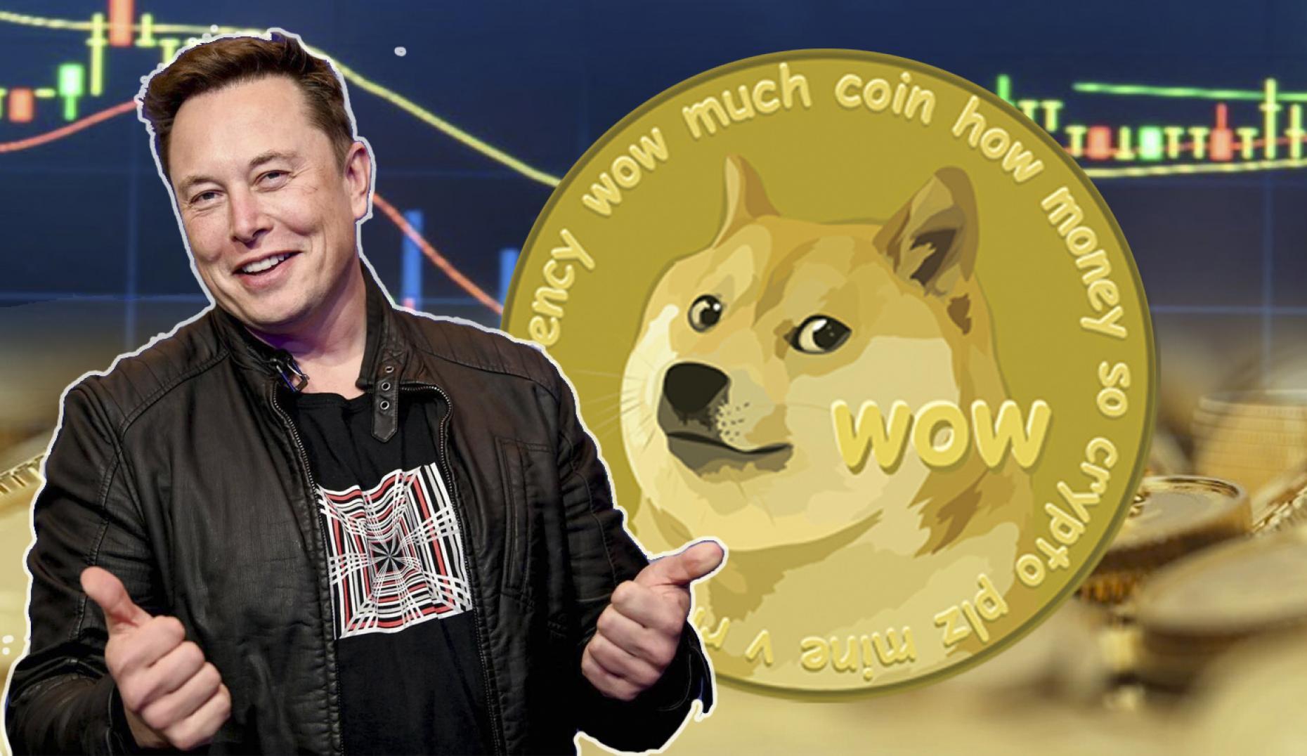 4 posibles razones por las que se ha disparado el Dogecoin (y muchas criptomonedas) 1