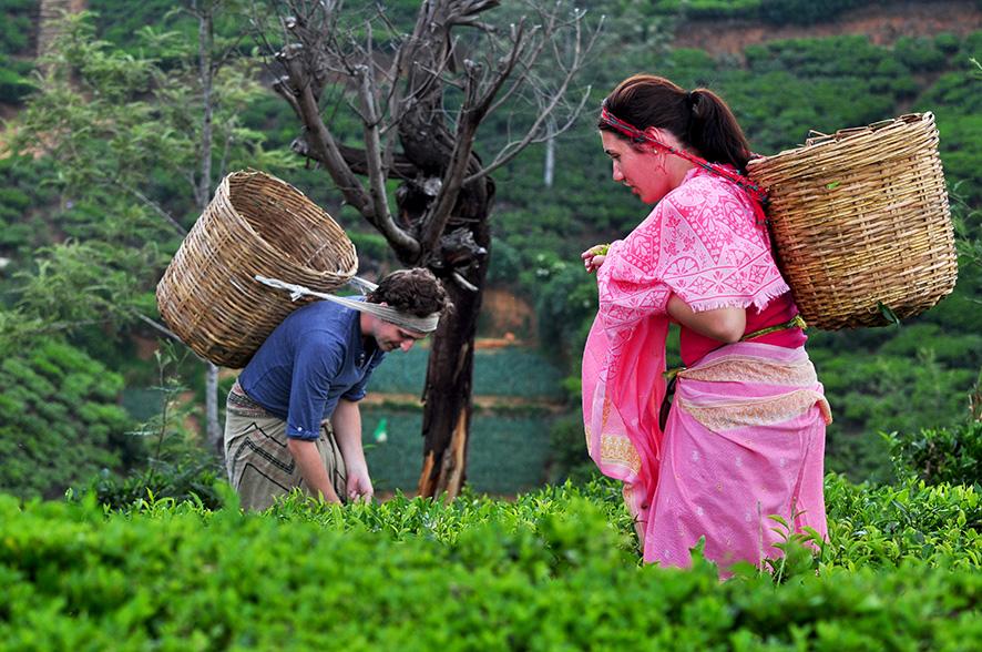 ¿Qué está pasando en el primer país con el 100% de agricultura orgánica? 1