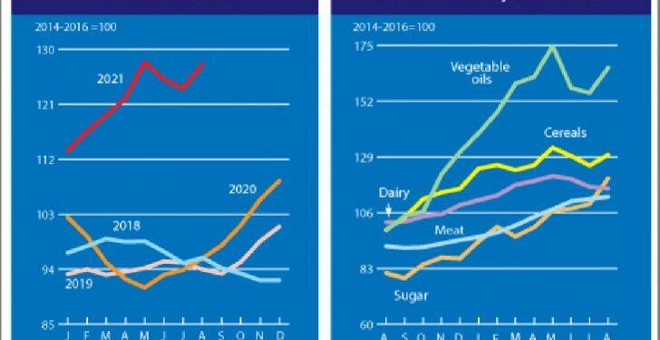 No es solo la electricidad, los alimentos también están disparando su precio 1
